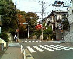 image - 桜坂